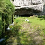 Wookey Hole & Caves
