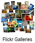 flickr_gal_icon